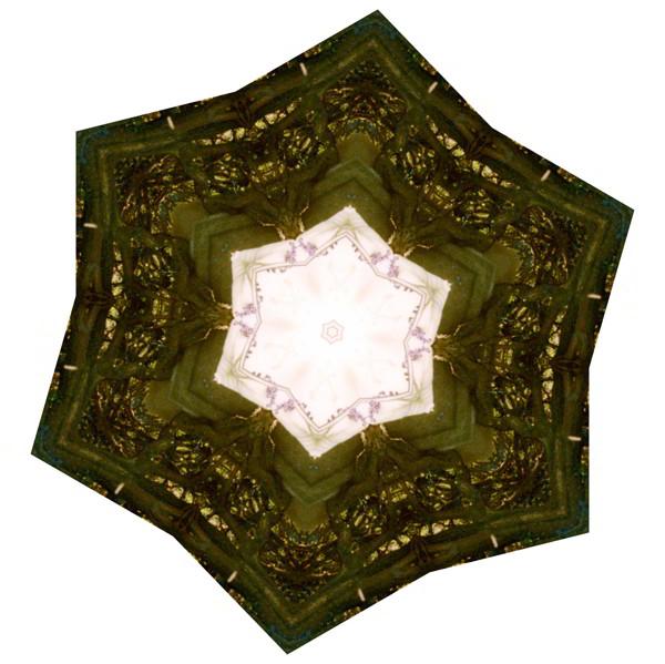 """Ein Kaleidoskop ist ein kleines Rohr, in dem man durch Drehen immer wieder neue Mosaiken erzeugen und sehen kann. Das """"Fritz-Levy-Kaleidoskop"""" zeigt einen Mann, dessen Facetten sich selbst mehr als 30 Jahre nach seinem Tod je nach Blickwinkel neu zuammensetzen. (Fotomontage, G. Rott)"""